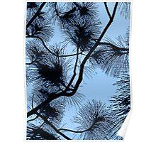 Desert flora, abstract pattern, floral design, black and light blue Poster