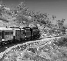Riding the Afghan Express by Jan Pudney