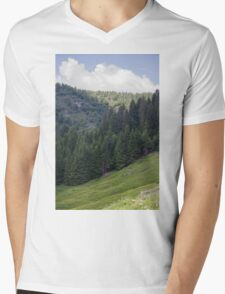 mountain landscape Mens V-Neck T-Shirt