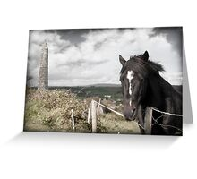 black Irish horse and ancient round tower Greeting Card