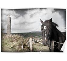 black Irish horse and ancient round tower Poster