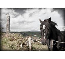 black Irish horse and ancient round tower Photographic Print
