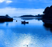 blue toned silhouette of boat and birds at sunset by morrbyte