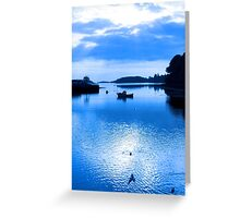 blue toned silhouette of boat and birds at sunset Greeting Card