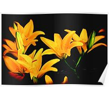 Digital Lilies Poster