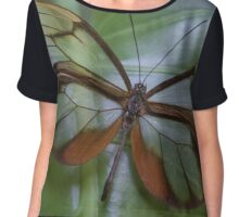 Glasswing Chiffon Top