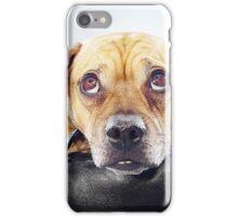 Puppy Eyed Oaks iPhone Case/Skin