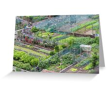 vegetable garden in the hills Greeting Card