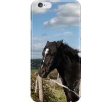 couple of Irish horses and ancient round tower iPhone Case/Skin