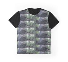 Boulder and Forest Surrounding LeConte Memorial Lodge in Yosemite National Park. 8/7/2016 Graphic T-Shirt