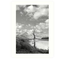 Errigal mountains and countryside in county Donegal Art Print