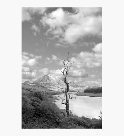 Errigal mountains and countryside in county Donegal Photographic Print