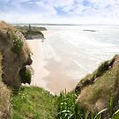 flora view from the top of the cliffs in Ballybunion by morrbyte