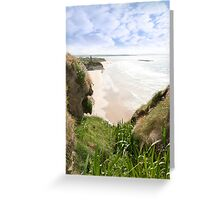 flora view from the top of the cliffs in Ballybunion Greeting Card