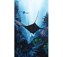 Flying Free Eagle Rays Photographic Print