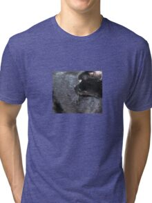 Black Cat Looking Back Tri-blend T-Shirt