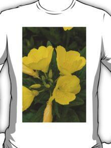 flower in the garden T-Shirt