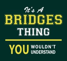 It's A BRIDGES thing, you wouldn't understand !! by satro