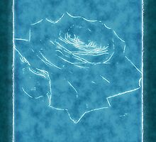 Pink Roses in Anzures 3 Outlined Blue by Christopher Johnson