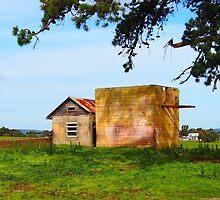 Country Victoria Farm Buildings by Ronald Rockman