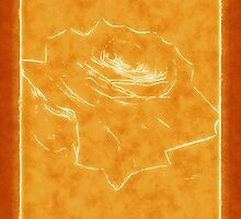 Pink Roses in Anzures 3 Outlined Orange by Christopher Johnson