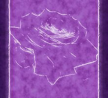 Pink Roses in Anzures 3 Outlined Purple by Christopher Johnson
