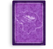 Pink Roses in Anzures 3 Outlined Purple Canvas Print