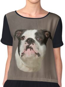 Bulldog Water Color Art Painting Chiffon Top
