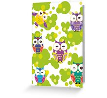 Colourful owls Greeting Card