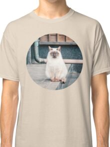 Cat, Aso, Temple Classic T-Shirt