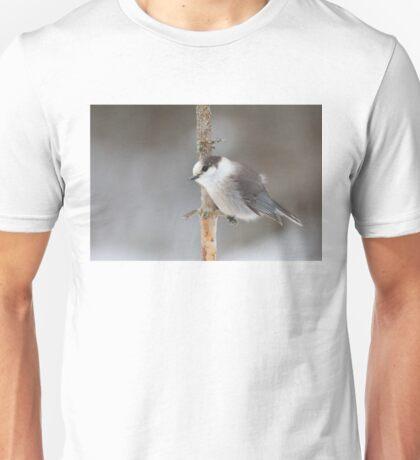 Gray Jay - Algonquin Park Unisex T-Shirt
