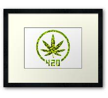 420 Camouflage Framed Print