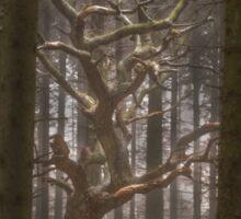 Singular Tree Sticker