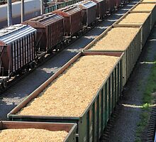 rail cars loaded with wood chip by mrivserg