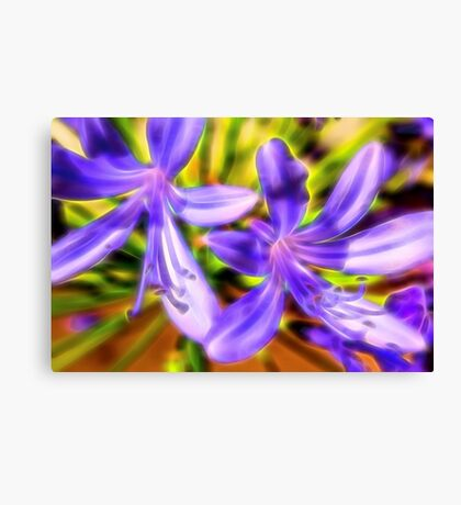 African Lily Flower Canvas Print