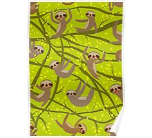 Cute Sloths on green Poster