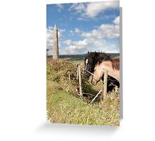 pair of Irish horses and ancient round tower Greeting Card