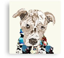 a pit bull day  Canvas Print