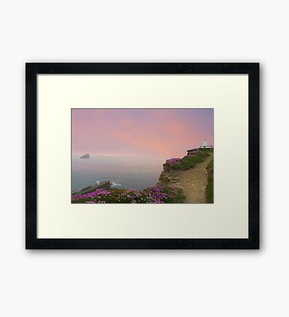 Thrift Flowers Portreath Cornwall Framed Print