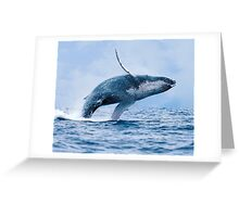 Breaching Humpback Whale Greeting Card