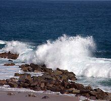 Sea Of Cortez by phil decocco