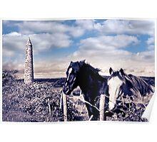 pair of wild Irish horses and ancient round tower Poster