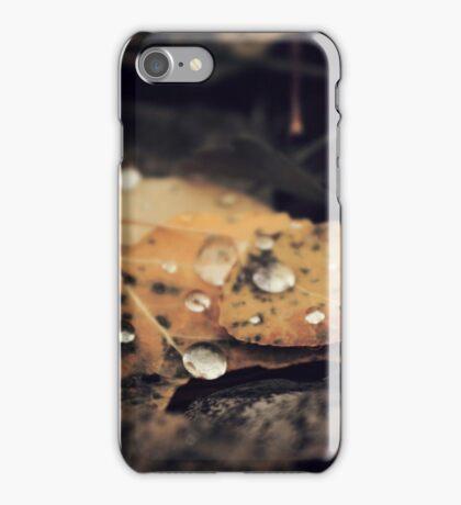 Autumn Dew iPhone Case/Skin