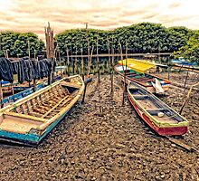 Boats on the Mud by Paul Wolf