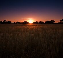 Colourful Kalahari Sunsets by lightwanderer