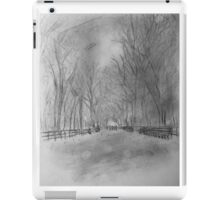Central Park in (late) Fall iPad Case/Skin