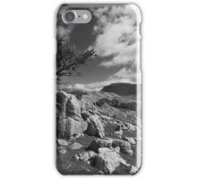 The Lonesome Tree iPhone Case/Skin