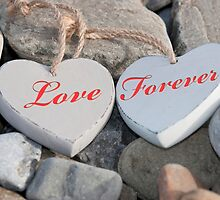 two love hearts on a rocky beach as one by morrbyte
