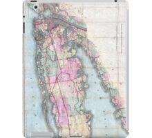 Vintage Map of Long Island (1880)  iPad Case/Skin
