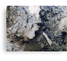 Looks just like 'Granite' but it's not...:) Canvas Print
